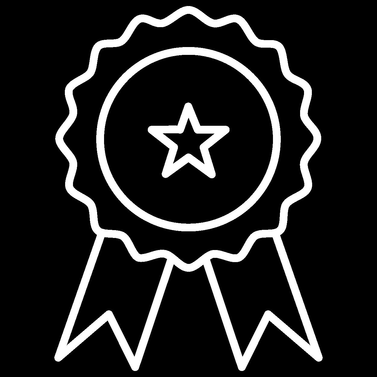 icone conquista